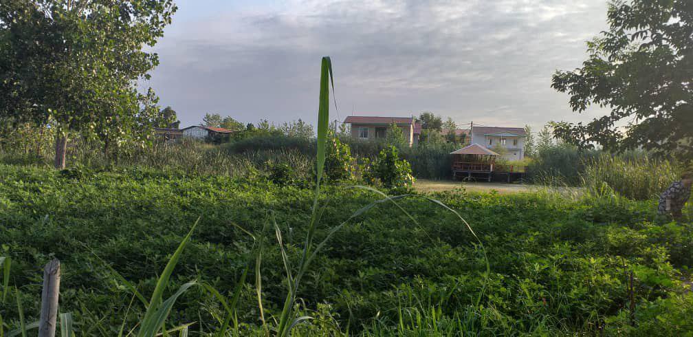 فروش زمین در گیلان